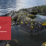 Tuxera <3 Baltic Sea